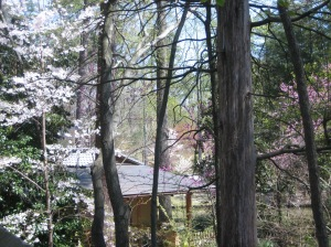Roof of the tea pavilion through the trees