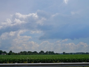 Clouds over corn and trees.