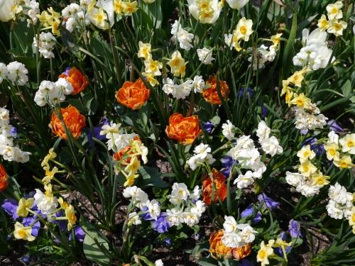 Spring forth!