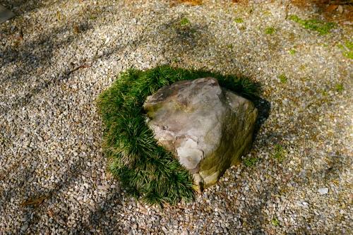 Tiny rock garden