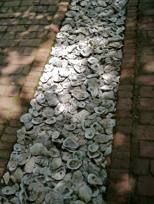 Oyster shells and brickwork.
