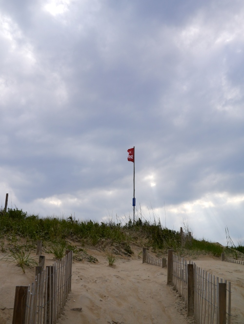 The No Swimming flag flying in the wind.