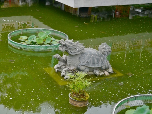 Turtle-lion fountain surrounded by actual turtles.